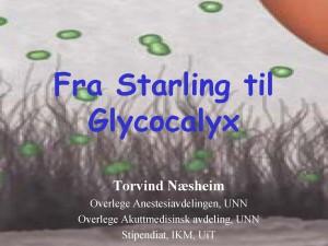 Starling og Glycocalyx 2016